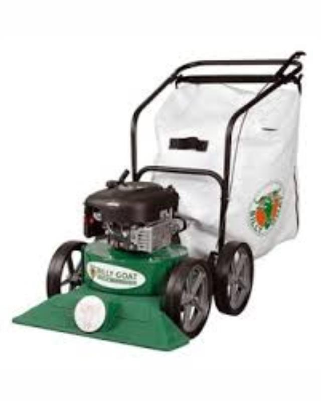 Where to find Vacuum, Lawn in Edmonton